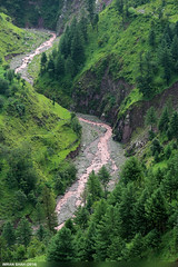 Balakot (gilgit2) Tags: trees pakistan mountains water canon landscape geotagged rocks stream tags location elements vegetation greenery tele balakot kpk canoneos650d imranshah canonefs55250mmf456isii gilgit2