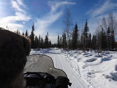 DSCN0998 (delirious_equilibrium) Tags: snow alaska fairbanks snowmobiling snowmachining