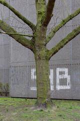 IMG_6273 (kap_7) Tags: berlin gropiusstadt lipschitzallee