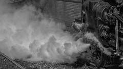Letting off steam (neil.bulman) Tags: station train norfolk railway historic steam locomotive sheringham steamtrain northnorfolkrailway britishrailways northnorfolk 76084 standard4 locomotivecompany