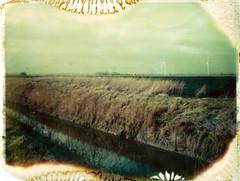 Fenland Drains - Tick Fen 2016 (Andrew Bartram (WarboysSnapper)) Tags: reeds fens cambridgeshire fenland turbines drains polaroidweek iduv tickfen 100packfilm tipshow believeinfilm snapitseeit savepackfilm roidweek16 polaroidboogie