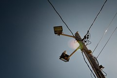 Two lights, three gulls (Geoff Valentine) Tags: sky seagulls birds lights looking gulls chillin wires lensflare 40 telephonepole chill
