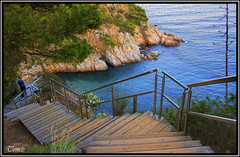 - CAMINO Y MIRADOR EN TOSSA DE MAR - (Tomas Mauri) Tags: naturaleza madera agua arboles playa dia escalera costabrava mirador roca tossademar baranda aguatransparente sonyalfa350 miradorcostabrava