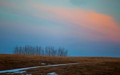 Grove (stevenbulman44) Tags: blue winter light sky canon landscape outdoor filter lseries 70200f28l