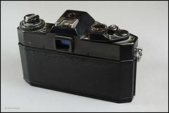 Yashica FX-1 (04) (Hans Kerensky) Tags: lens display electro 50 ml yashica 117 fx1