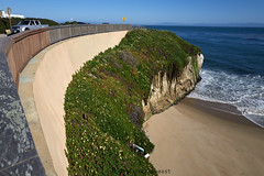 west_cliff_L2000186 1 (nocklebeast) Tags: ca usa santacruz walk westcliff nrd scphoto