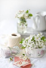 CherryBlossom-StillLife-800PX-SimiJois-2016_edited-3 (Simi Jois) Tags: pink wedding stilllife white highkey babyshower
