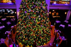 Macy's Christmas Tree in the Walnut Room. (Cragin Spring) Tags: christmas city urban usa chicago tree lights illinois midwest holidays downtown december unitedstates loop unitedstatesofamerica chitown christmastree il ornaments departmentstore macys chicagoloop marshallfields walnutroom chicagoillinois windycity