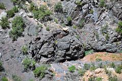 Black Canyon Formation (Paleoproterozoic, 1.759 Ga; Cold Shivers Point, Columbus Canyon, Colorado National Monument, Colorado, USA) 1 (James St. John) Tags: columbus black cold monument rock point colorado rocks plateau canyon formation national shivers schist precambrian metamorphic gneiss paleoproterozoic proterozoic