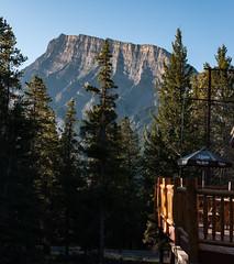 Rundle Mountain, Banff from accomodation (Steve AM) Tags: trees rundle mountain rundlemountain banffmountain canada canadianrockies rockies canadian rockymountains albertacanada alberta moosetour summer2013 northamerica