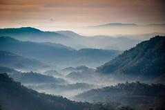 Good Morning Munnar (PicsofAB) Tags: morning mountain mountains fog sunrise landscape outdoor scenic kerala mountainside munnar d90 keralaindia rollingmountains nikond90 munnarkerala chandyswindywoods