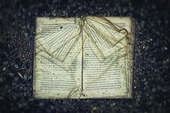 Forgotten story (Clare Pickett) Tags: old broken wet book words pages damaged
