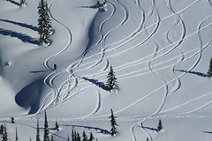 Ski Tracks (Zach Hawn) Tags: winter wild mountain snow nature outdoors washington nationalpark natural mountrainier rainier pacificnorthwest snowshoeing mtrainier pnw mrnp