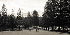 (bigboysdad) Tags: leica blackandwhite bw lumix au australia olympus panasonic newsouthwales kiama 25mm m43 ep5