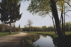 Solace (Carlo Milani) Tags: landscape artistic fineart artisticphotos