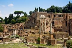 Palatino Forum - Rome