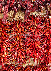 Dry Chili Peppers (Jerry Fornarotto) Tags: chile red food hot newmexico southwest chili flavor display market decorative traditional dry vegetable spanish spices bunch hanging peppers produce spicy hispanic tradition seasoning southwestern ingredient strands santfe sonya7r sonyfe2470mmf4zaoss jerryfornarotto