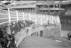 Residue left by Manchester floods. (Stuart Grout) Tags: bw film manchester kodak bwfp