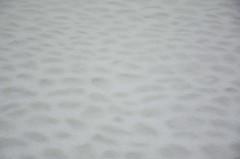 Lumesadu Laial tnaval (anuwintschalek) Tags: street schnee winter white snow backyard tallinn estonia strasse innenhof january lai snowfall lumi altstadt oldtown weiss eesti estland talv vanalinn 2016 schneefall tnav valge laitnav d7k lumesadu siseu nikond7000 sillutis loodusmuuseum munakivisillutis 18140vr