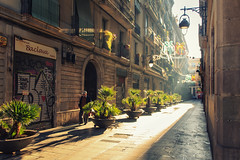 At the Alley in the Morning (Shinichiro Hamazaki) Tags: barcelona spain alley raval