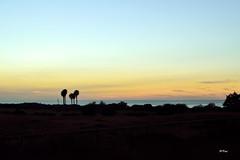 En silencio (ZAP.M) Tags: sunset naturaleza del contraluz atardecer andaluca nikon flickr paz paisaje m cerro cdiz novo petri sancti zapm nikon5300 chcilana