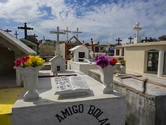 amigo (davidnofish) Tags: cemetery mexico amigo friend cross events places olympus graves tombstones islamujeres em1 mexicoholiday m1240mm