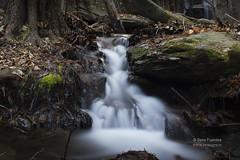 NATURE (serafuentes) Tags: naturaleza nature ro flow paisaje invierno aire almeria libre arroyo caudal