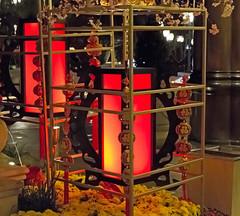 Bellagio_Chinese New Year 1 (Swallia23) Tags: las vegas flowers money hotel peach chinesenewyear casio nv bellagio yearofthemonkey 2016 conservatorybotanicalgarden