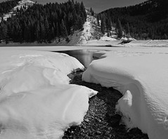 Fluffy Banks (JasonCameron) Tags: winter bw white snow black cold ice nature monochrome river landscape flow mono fork canyon american inlet banks tibble
