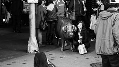 Gril and Pig (matthew w mullins) Tags: seattle blackandwhite monochrome washington candid streetphotography pikeplacemarket pnw pnwcollective
