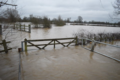 Flooding around Crow Mills - 9/3/16 (lcfcian1) Tags: road wet water river flooding gate flood south around crow mills floods wetroad sence wigston 9316 floodedroad blaby southwigston crowmills riversence southwigstonflood crowmillssouthwigston crowmillsflood floodingaroundcrowmills9316