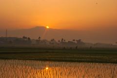 A New Day (elly.sugab) Tags: morning light sun sunrise dawn pagi sawah