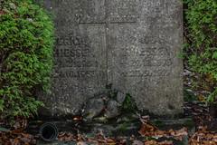 Bambi (michael_hamburg69) Tags: sculpture friedhof cemetery germany deutschland hamburg skulptur bambi roedeer reh ohlsdorf kitz ohlsdorferfriedhof gottesacker rehkitz grabmalthiessen