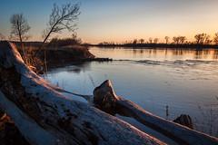 Driftwood (Vincent Parsons) Tags: wood river big log lexington jetty bank mo driftwood missouri heavy
