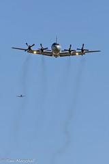 AP-3C Orion YEDN 150316 -3 (Tom Marschall) Tags: plane airport aviation south australia airline adelaide sa avgeek avporn