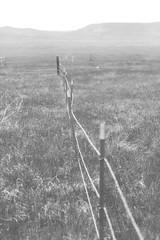 UV Fence