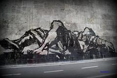 Triumphs and Laments (2016) sar unopera su larga scala: un fregio lungo 500 metri realizzato rimuovendo la patina biologica dai muraglioni di travertino che costeggiano la banchina del fiume a Roma. Moltissime figure, alte fino a 10 metri, che esplorano (alessandro nicomedi) Tags: roma canon tevere murales lazio triumphs d600 lamentes