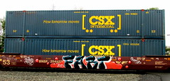 fart (timetomakethepasta) Tags: train graffiti palm barf fart freight bnsf csx batle intermodal