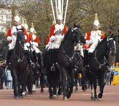 queen,s lifeguards-household cavalry mounted regiment 27 04 2016 (2) (philipbisset275) Tags: unitedkingdom queen victoriamemorial centrallondon cityofwestminster englandgreatbritain householdcavalrymountedregiment slifeguards 27042016