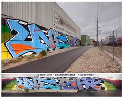 Nesh (Herbalizer) Tags: vienna wien wall train graffiti austria sterreich big wand linie rip wiener huge bb fett trackside linien nesh