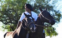 Federico y El Picarda (Eduardo Amorim) Tags: horses horse southamerica argentina criollo caballo cheval caballos cavalos corrientes pferde herd cavalli cavallo cavalo gauchos pferd chevaux gaucho  amricadosul gacho amriquedusud  gachos  sudamrica suramrica amricadelsur sdamerika crioulo caballoscriollos criollos jineteada  tropillas americadelsud gineteada tropilhas tropilla crioulos cavalocrioulo americameridionale tropilha caballocriollo eduardoamorim cavaloscrioulos curuzcuati provinciadecorrientes corrientesprovince cavall
