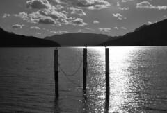 I guardiani del lago (illyphoto) Tags: italy lakecomo lombardia comolake lario photodiilariaprovenzi illyphoto photoilariaprovenzi