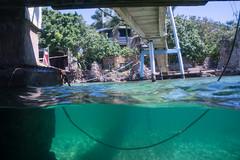 Leaving the dock (ianc7777) Tags: leica sony submarine stanley karl roatan exploration institue deepsea idabel trielmar a7rii