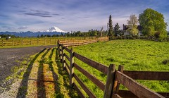 Ranch Foreman (writing with light 2422 (Not Pro)) Tags: ranchforeman mountrainier ranch sonya77 richborder washingtonstate hff happyfencefriday explored