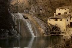 il mulino (lauretta michelutti) Tags: acqua autunno mulino