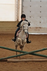 Riding lessons (bobdunn7750) Tags: life horse canada speed jumping awesome free dirty indoors riding around springtime lessons horsejumping horsing 2016