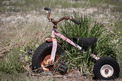 Rusty Ride (The Noodle!) Tags: toy tricycle rusty il abaondoned