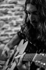 IMG_1787 (Barbasucia) Tags: bw music byn surf guitar rockroll surfmusic 60s acustic losdaytonas