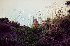 tierra y mar (patoche 38) Tags: sea mer grass landscape faro mar paisaje poetic paysage phare herbe hierba