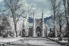 Nunhead Cemetery. (blackwoodse6) Tags: blue trees sky white london cemetery graveyard ir nikon chapel infrared foilage southlondon southwark nunhead falsecolour southeastlondon nunheadcemetery se15 infraredphotography londoncemeteries 720nm londonboroughofsouthwark